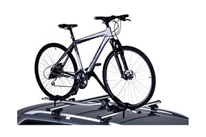 Bicycle rack services